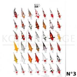 Poster couleurs carpes koi