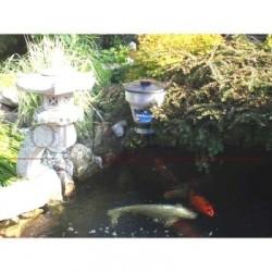 Distributeur de nourriture pour bassin de jardin