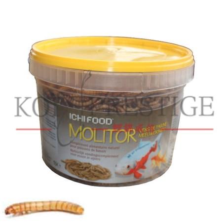 ICHI FOOD Molitor