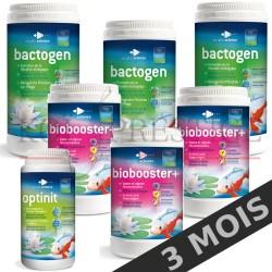 Bactéries bassin entretien 24 m3