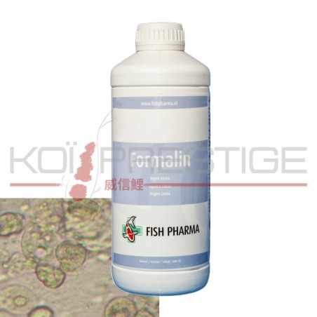 Formaline 40% 1L