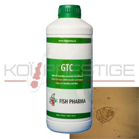 GTC 500ml - 1L (acriflavine/malachite)