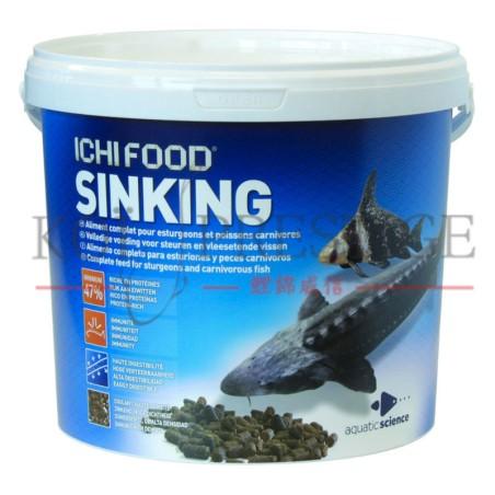 ICHI FOOD Sinking