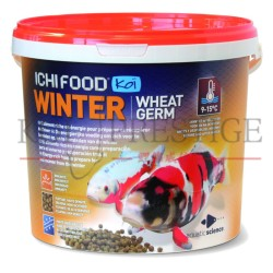 nourriture poissons de bassin hiver