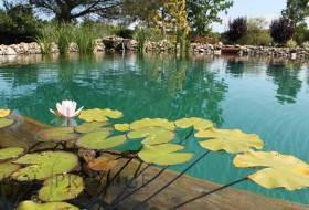 Traitement complet pour piscine naturelle et bassin de baignade ou bio
