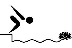 Tout le matériel, bactéries et conseils pour votre piscine naturelle