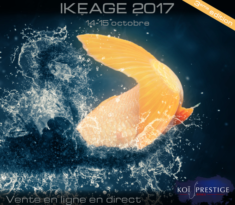Ikeage 2017
