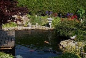 Reprise de lagune bassin chez Luc