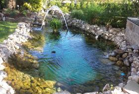 Le bassin de jardin de Gérard