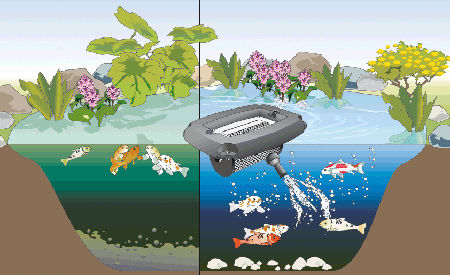 A rateur pour grand bassin jusqu 39 250 m3 oase aqua air 250 for Bassin poisson sans pompe