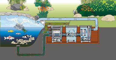 Filtre pour bassin carpe koi oase proficlear premium la for Filtre bassin koi