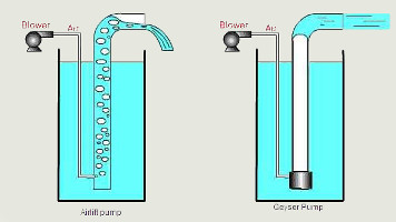 Pompe bassin consommation for Koi prestige