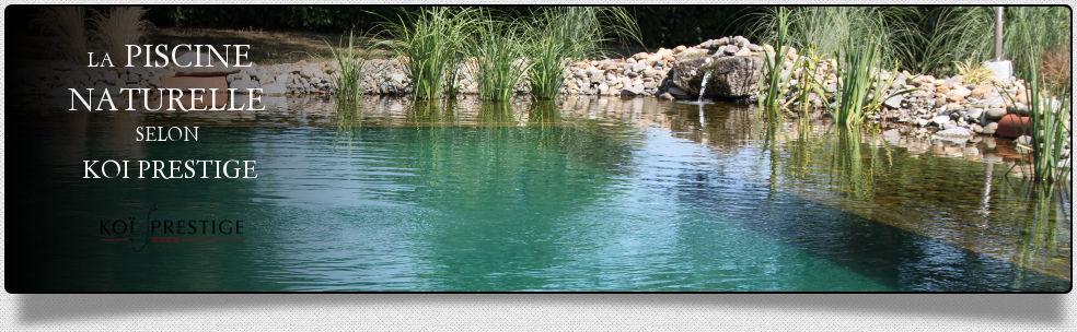 piscine naturelle crystal wood piscine naturelle complète avec ...